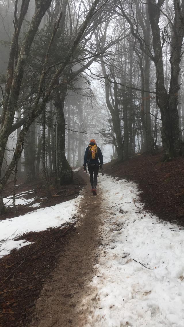 Trail blanc des Vosges 18km 2018